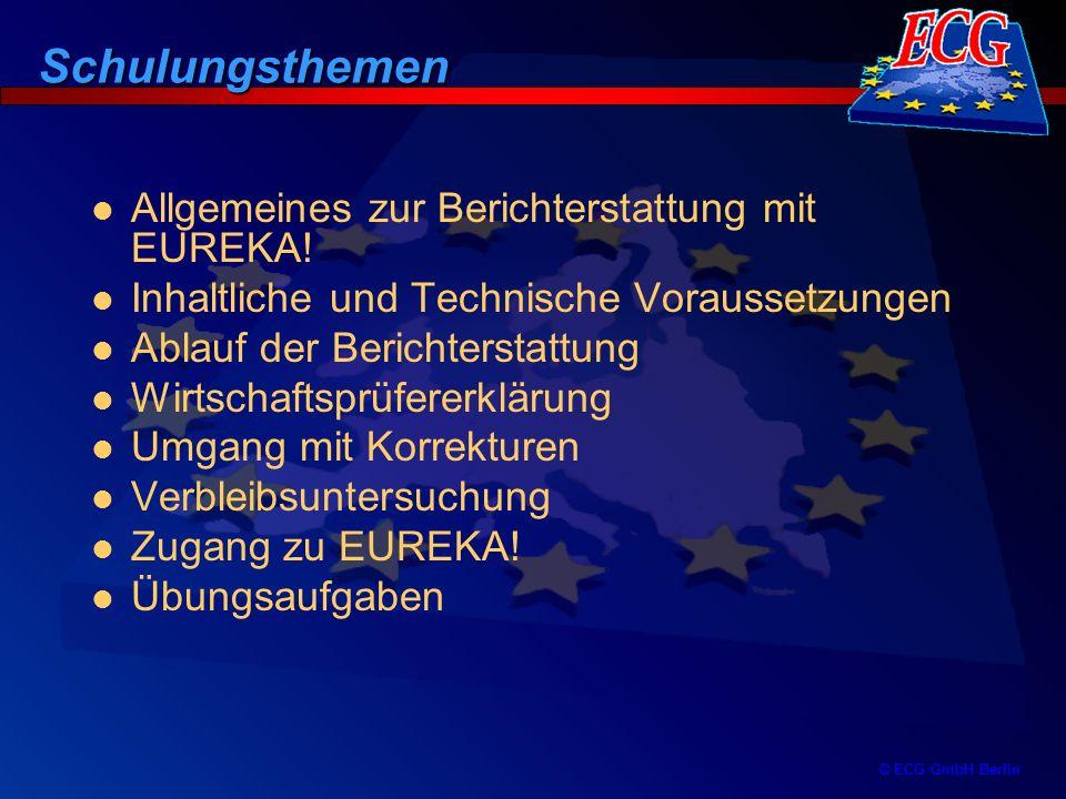 © ECG GmbH Berlin Jahresberichte und Endberichte –erfordern keine aktive Handlung und werden automatisch vom EUREKA!-Programm aus den vorhandenen Zwischenberichten erstellt –können nur im EUREKA!-Programm angezeigt oder ausgedruckt werden –kein manueller Zugriff möglich Ablauf der Online-Berichterstattung