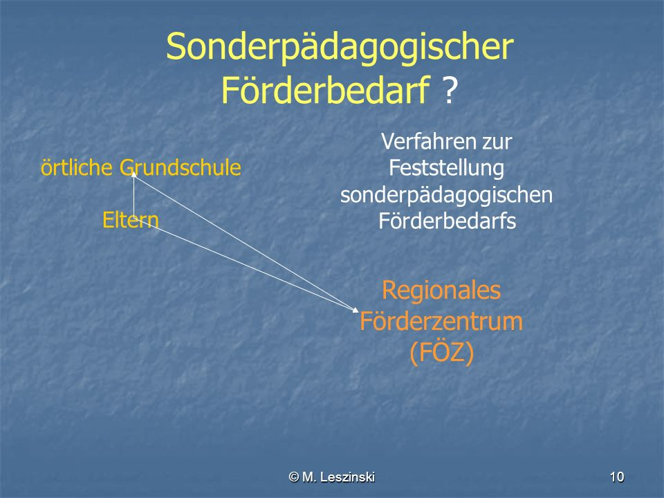 © M.Leszinski10 Sonderpädagogischer Förderbedarf .