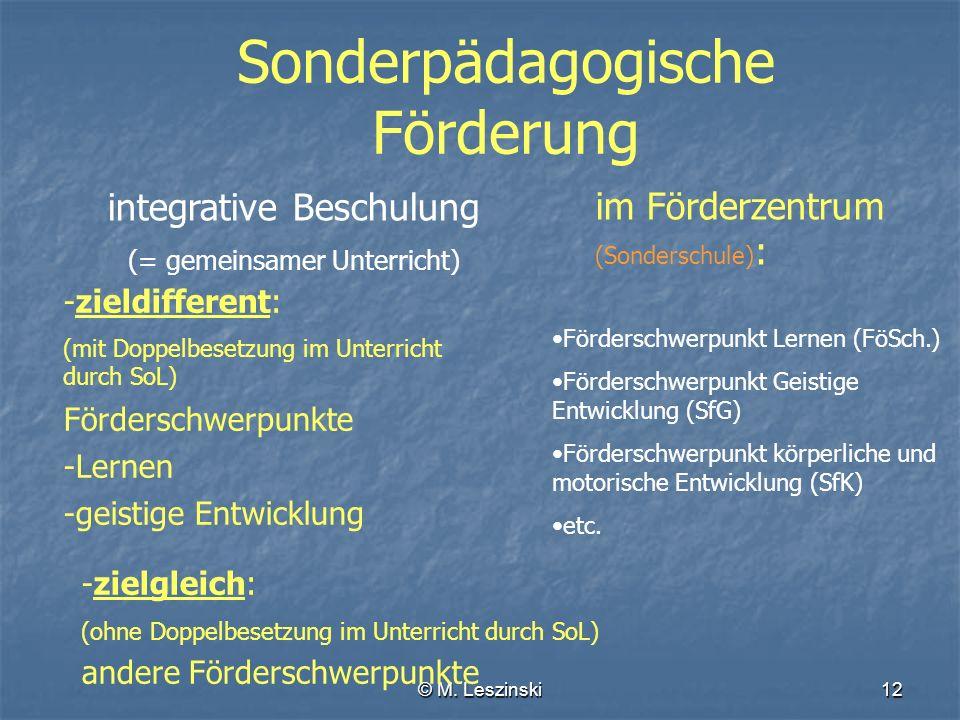 © M. Leszinski12 im Förderzentrum (Sonderschule) : Förderschwerpunkt Lernen (FöSch.) Förderschwerpunkt Geistige Entwicklung (SfG) Förderschwerpunkt kö