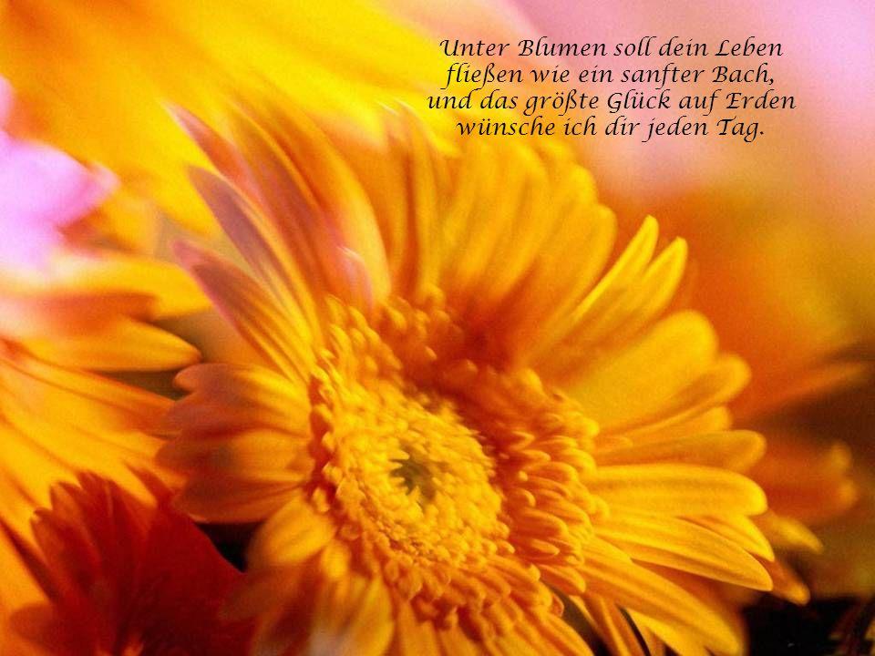 Die Freundschaft und die Liebe sind zwei Pflanzen an einer Wurzel. Die letztere hat nur ein paar Blumen mehr.