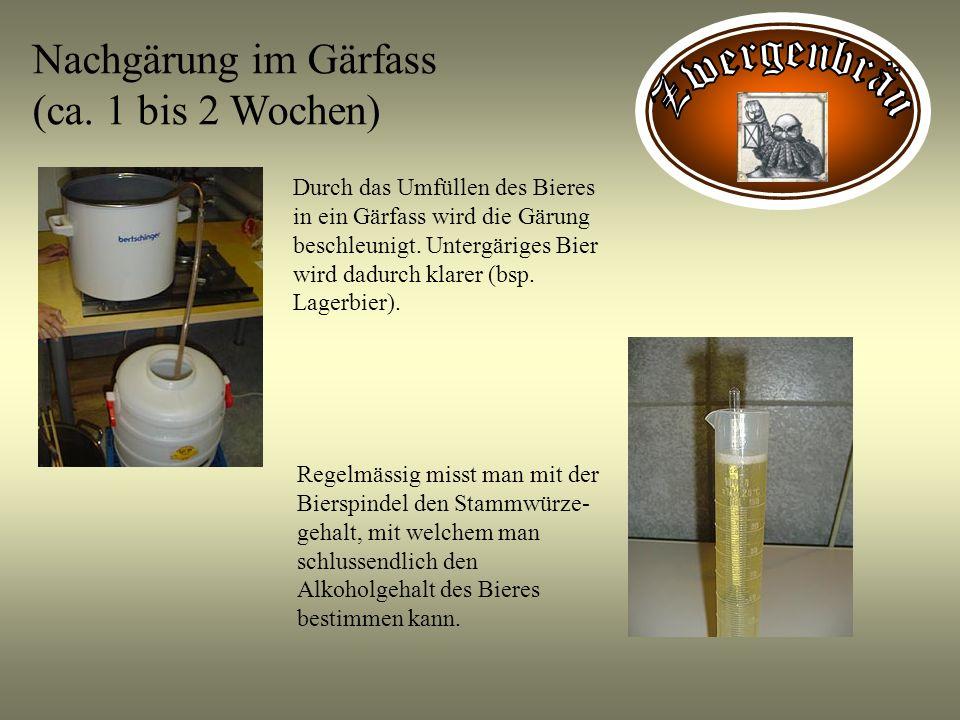 Nachgärung im Gärfass (ca. 1 bis 2 Wochen) Durch das Umfüllen des Bieres in ein Gärfass wird die Gärung beschleunigt. Untergäriges Bier wird dadurch k