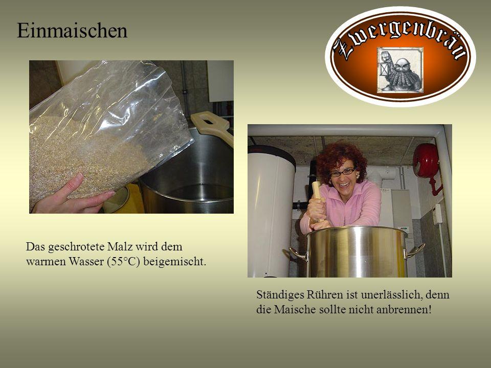 Einmaischen Das geschrotete Malz wird dem warmen Wasser (55°C) beigemischt. Ständiges Rühren ist unerlässlich, denn die Maische sollte nicht anbrennen