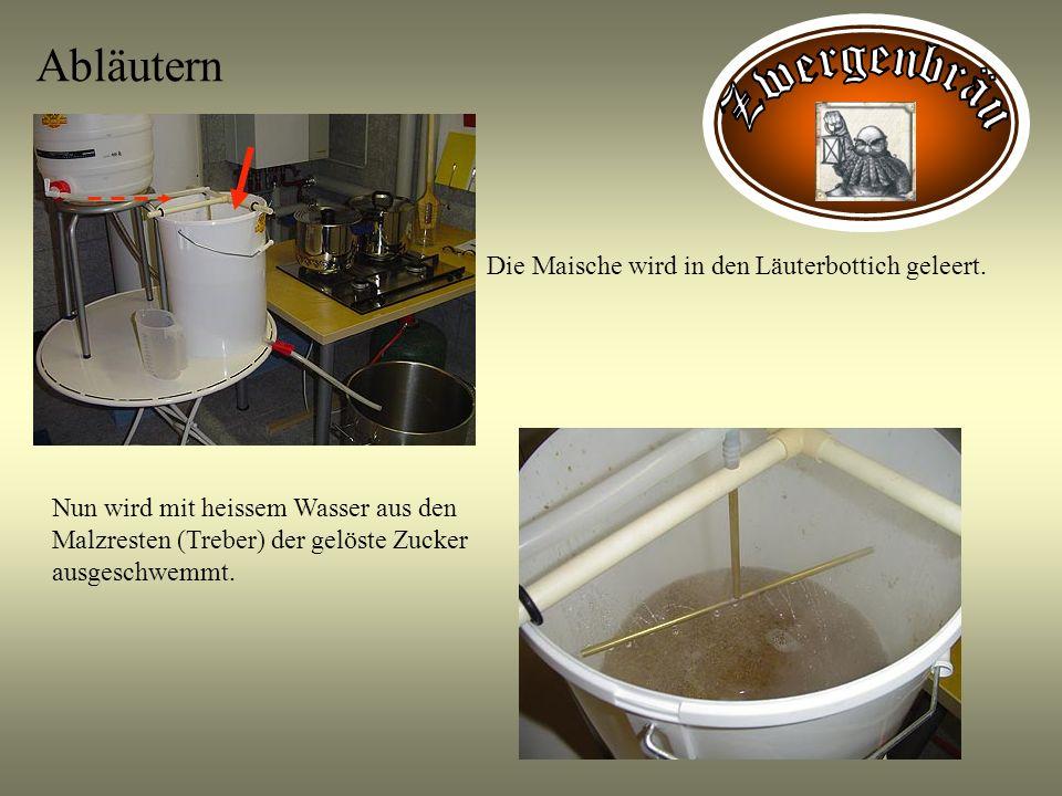 Abläutern Die Maische wird in den Läuterbottich geleert. Nun wird mit heissem Wasser aus den Malzresten (Treber) der gelöste Zucker ausgeschwemmt.