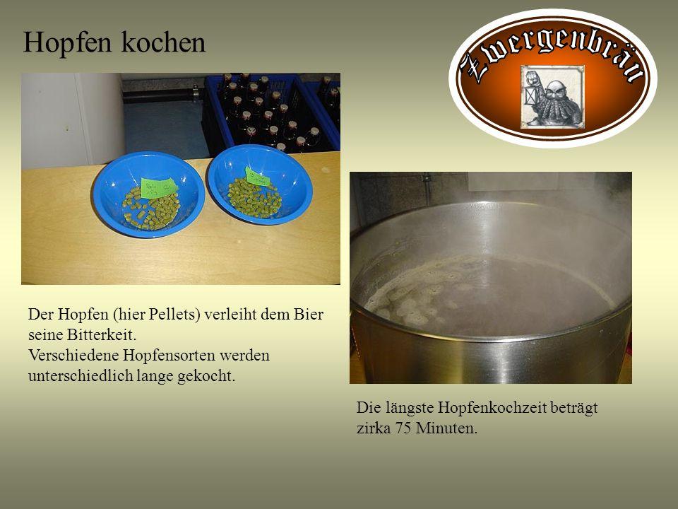 Hopfen kochen Der Hopfen (hier Pellets) verleiht dem Bier seine Bitterkeit. Verschiedene Hopfensorten werden unterschiedlich lange gekocht. Die längst
