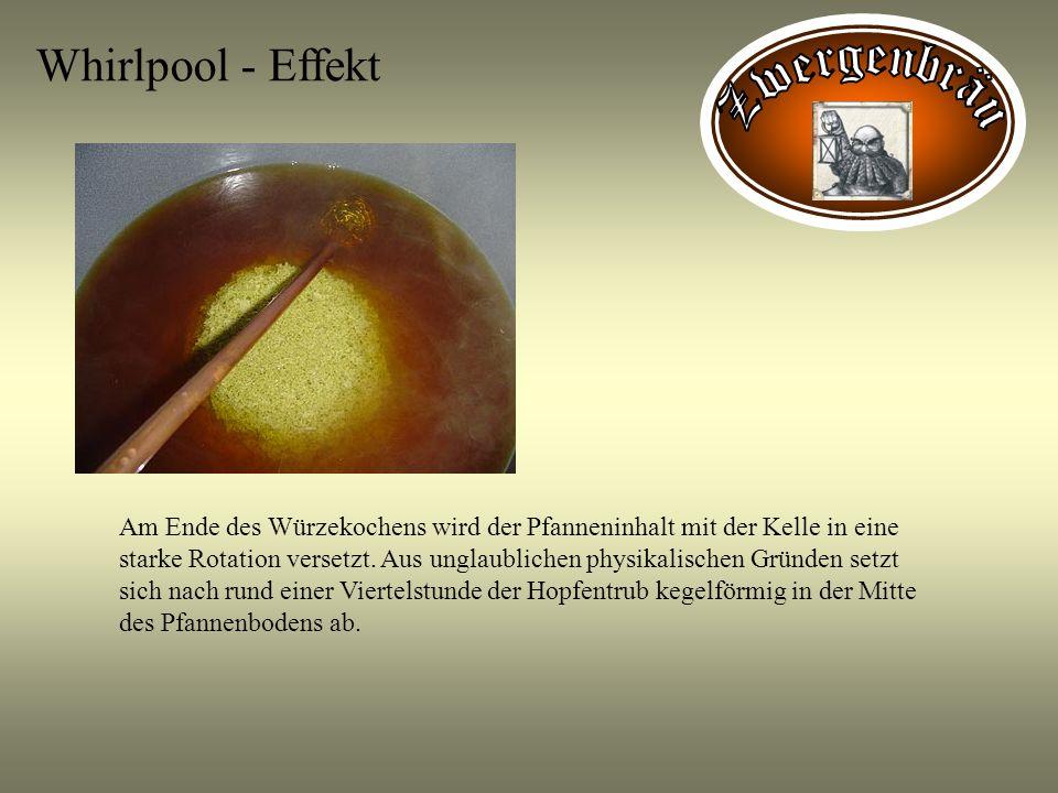 Whirlpool - Effekt Am Ende des Würzekochens wird der Pfanneninhalt mit der Kelle in eine starke Rotation versetzt. Aus unglaublichen physikalischen Gr