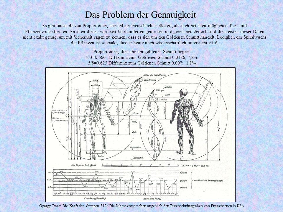 Das Problem der Genauigkeit Es gibt tausende von Proportionen, sowohl am menschlichen Skelett, als auch bei allen möglichen Tier- und Pflanzenwuchsformen.