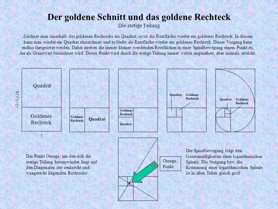 Der goldene Schnitt und das goldene Rechteck Die stetige Teilung Zeichnet man innerhalb des goldenen Rechtecks ein Quadrat, so ist die Restfläche wieder ein goldenes Rechteck.