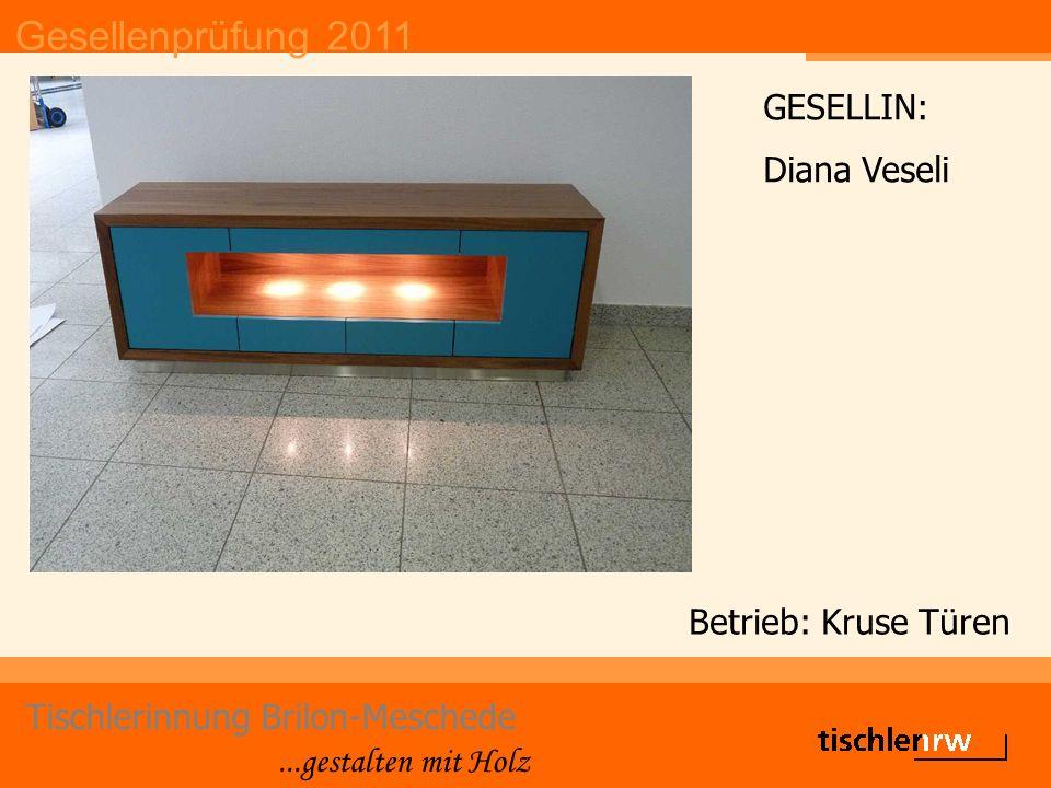 Gesellenprüfung 2011 Tischlerinnung Brilon-Meschede...gestalten mit Holz Betrieb: Kruse Türen GESELLIN: Diana Veseli