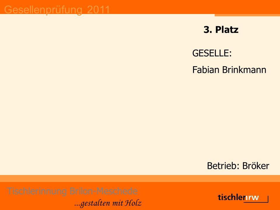 Gesellenprüfung 2011 Tischlerinnung Brilon-Meschede...gestalten mit Holz Betrieb: Bröker GESELLE: Fabian Brinkmann 3. Platz