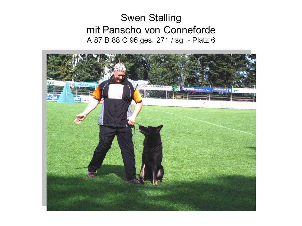 Swen Stalling mit Panscho von Conneforde A 87 B 88 C 96 ges. 271 / sg - Platz 6