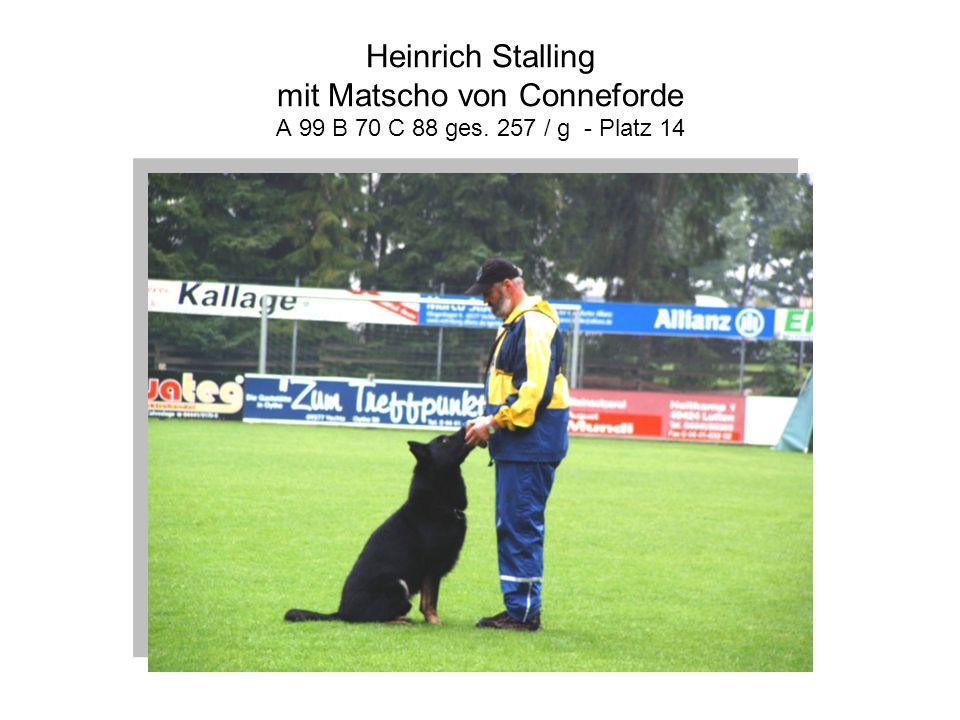 Heinrich Stalling mit Matscho von Conneforde A 99 B 70 C 88 ges. 257 / g - Platz 14