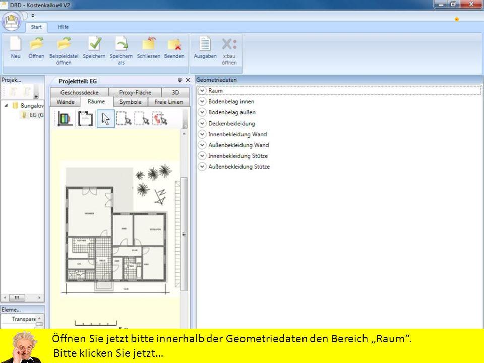 Öffnen Sie jetzt bitte innerhalb der Geometriedaten den Bereich Raum. Bitte klicken Sie jetzt…