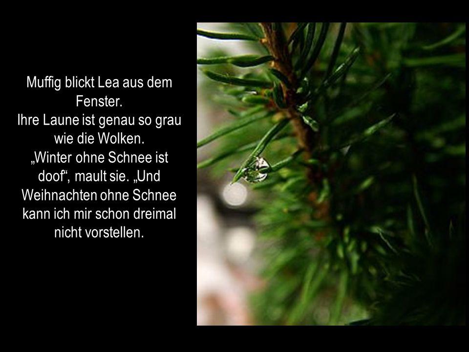 Autorin: Elke Bräunling PowerPoint bei: Renatchen Musik: Flockenreigen Für unsere Kinder Weiter mit KLICK