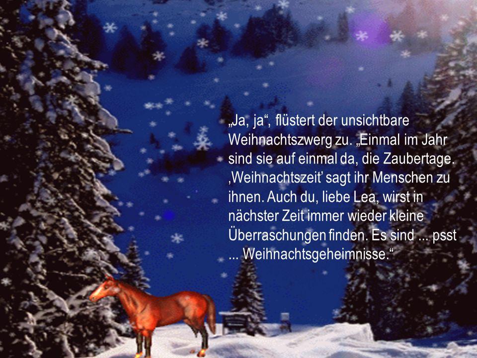 Lea staunt. Bist du ein Zauber-Weihnachtsstern? Das Sternchen blinkert zur Antwort hell auf und Lea ruft: Wie schön! Der Wald ist ein Zauberwald gewor