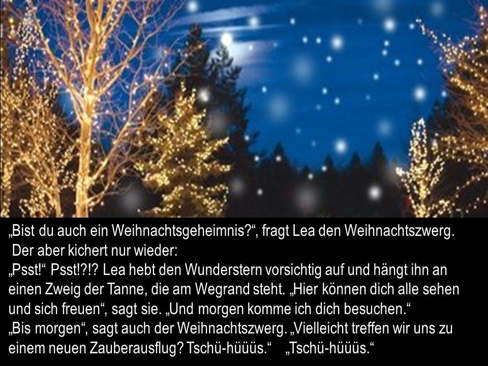 Ja, ja, flüstert der unsichtbare Weihnachtszwerg zu. Einmal im Jahr sind sie auf einmal da, die Zaubertage. Weihnachtszeit sagt ihr Menschen zu ihnen.