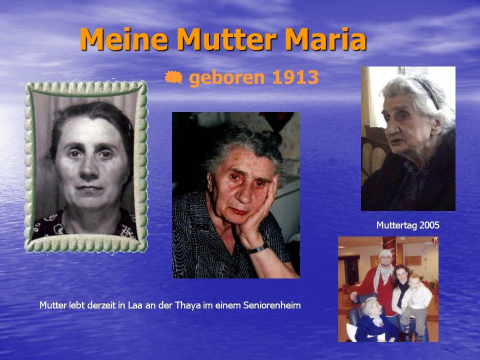 Meine Mutter Maria geboren 1913 Muttertag 2005 Mutter lebt derzeit in Laa an der Thaya im einem Seniorenheim