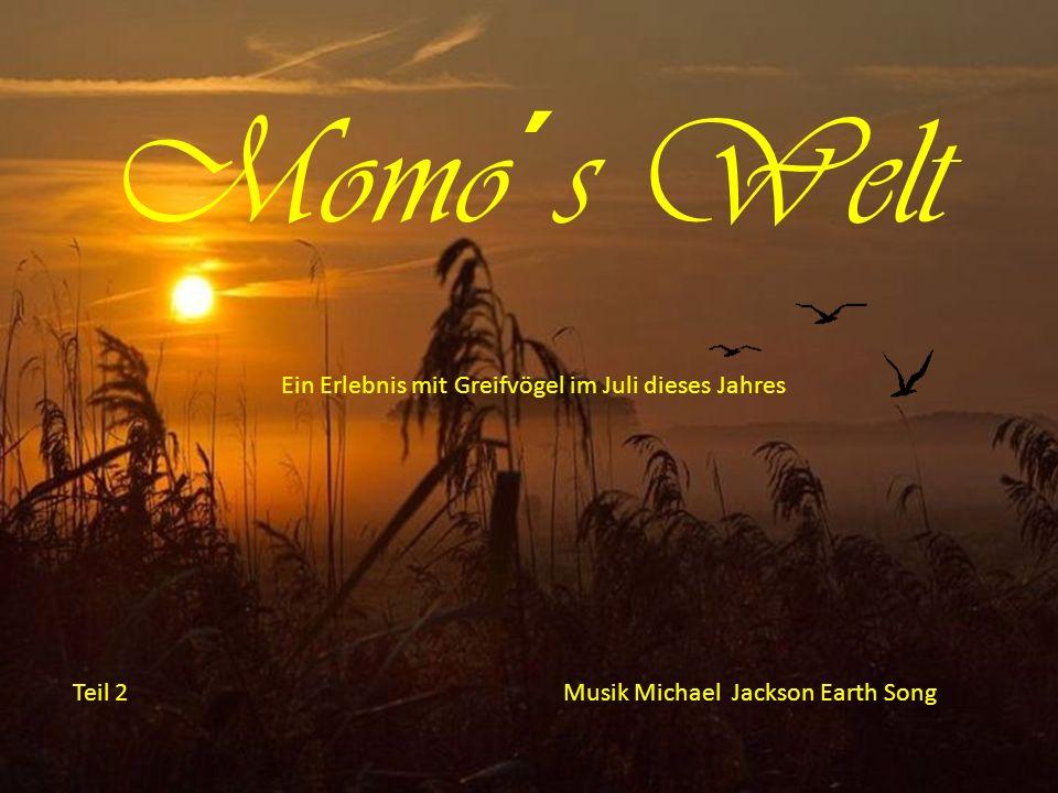 Momo´s Welt Teil 2Musik Michael Jackson Earth Song Ein Erlebnis mit Greifvögel im Juli dieses Jahres