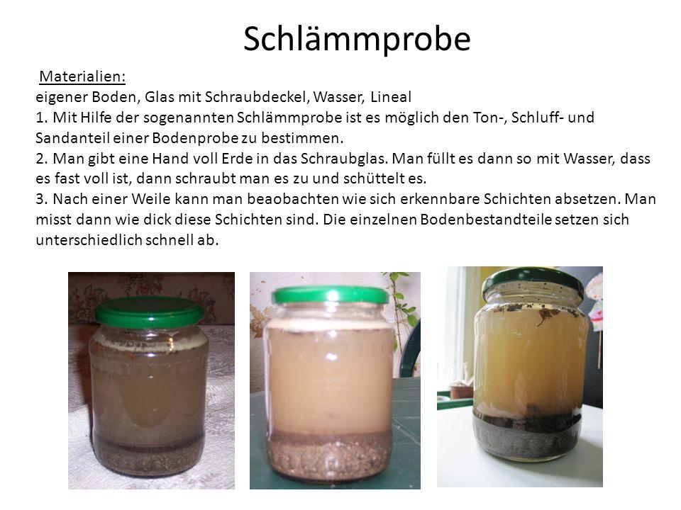 Gesamthöhe 11cm Abgestorbene Pflanzen- und Insektenteile (Humus) 1cm --- Wasser 6cm --- Ganz feine Steinchen (Ton) 1cm --- Feine Schlammteilchen (Lehm) 1cm --- Kleine Steinchen (Sand) 2cm --- Versuchsprotokoll