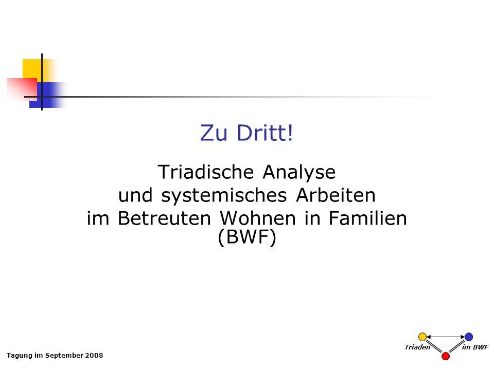 Tagung im September 2008 Triaden im BWF Zu Dritt! Triadische Analyse und systemisches Arbeiten im Betreuten Wohnen in Familien (BWF)