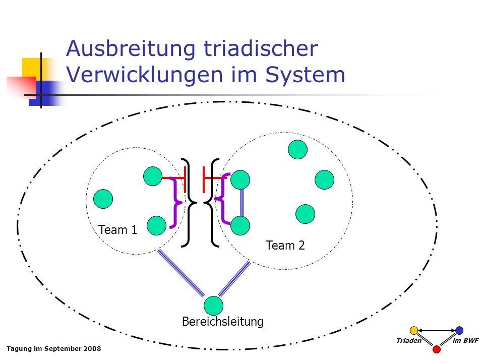 Tagung im September 2008 Triaden im BWF Ausbreitung triadischer Verwicklungen im System Team 1 Team 2 Bereichsleitung