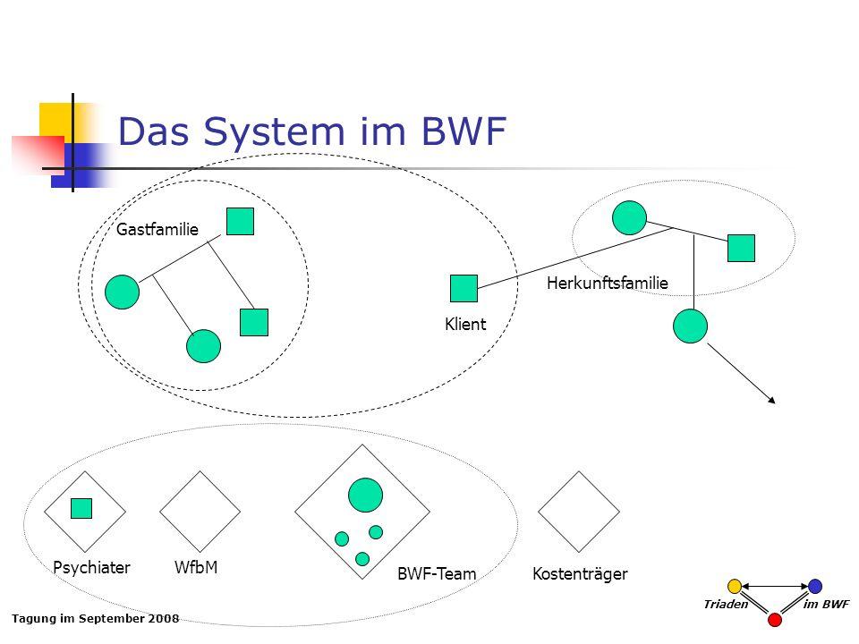 Tagung im September 2008 Triaden im BWF Das System im BWF Gastfamilie Klient BWF-Team PsychiaterWfbM Herkunftsfamilie Kostenträger