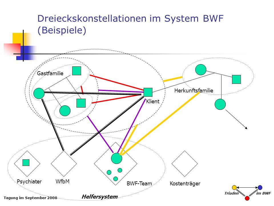 Tagung im September 2008 Triaden im BWF Dreieckskonstellationen im System BWF (Beispiele) Gastfamilie Klient BWF-Team PsychiaterWfbM Herkunftsfamilie