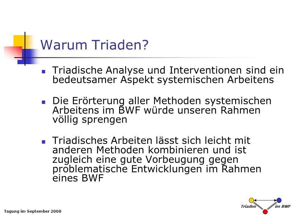 Tagung im September 2008 Triaden im BWF Warum Triaden? Triadische Analyse und Interventionen sind ein bedeutsamer Aspekt systemischen Arbeitens Die Er
