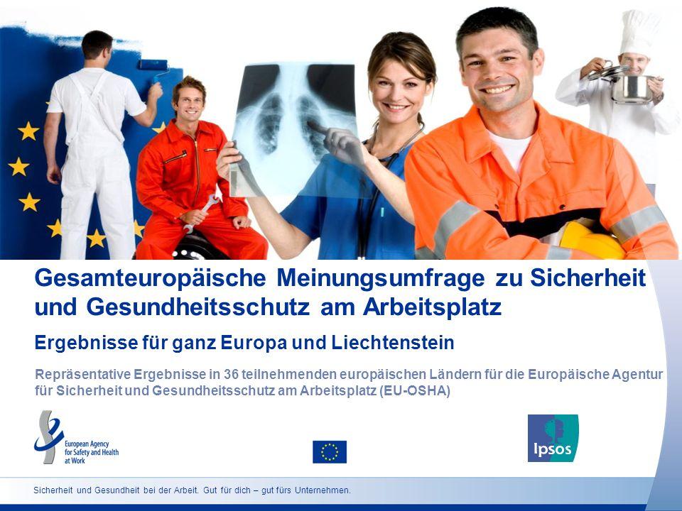 Sicherheit und Gesundheit bei der Arbeit. Gut für dich – gut fürs Unternehmen. Gesamteuropäische Meinungsumfrage zu Sicherheit und Gesundheitsschutz a