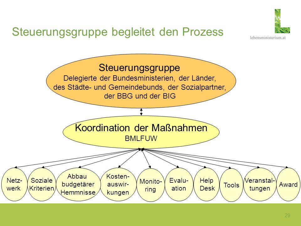 29 Steuerungsgruppe begleitet den Prozess Steuerungsgruppe Delegierte der Bundesministerien, der Länder, des Städte- und Gemeindebunds, der Sozialpart