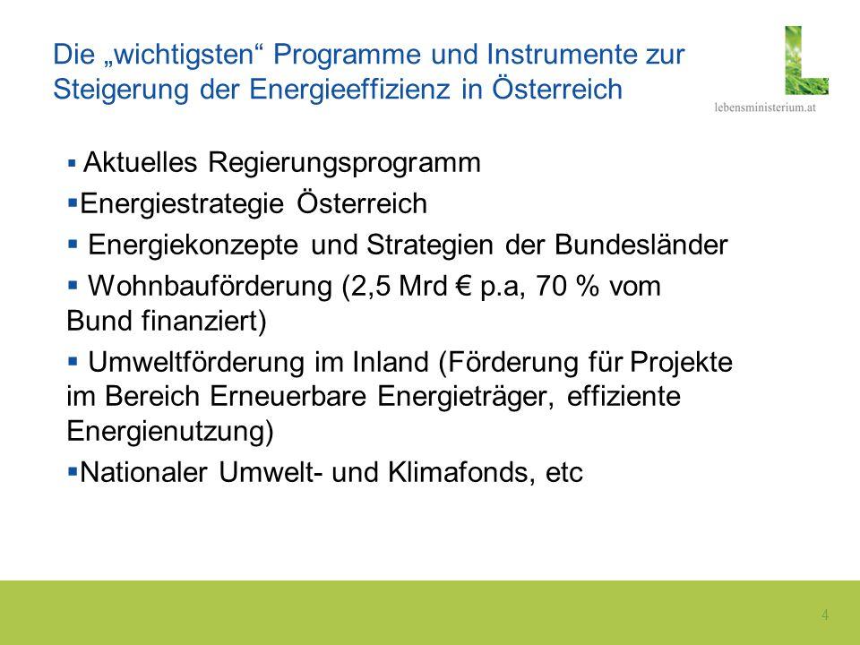4 Die wichtigsten Programme und Instrumente zur Steigerung der Energieeffizienz in Österreich Aktuelles Regierungsprogramm Energiestrategie Österreich