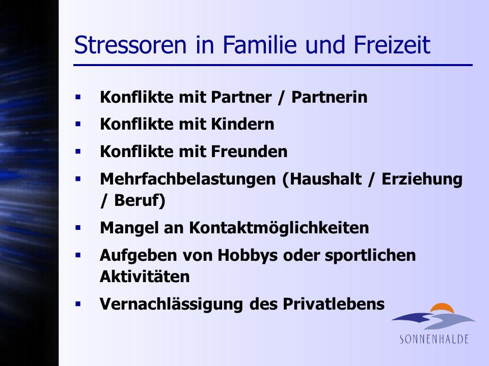 Stressoren in Familie und Freizeit Konflikte mit Partner / Partnerin Konflikte mit Kindern Konflikte mit Freunden Mehrfachbelastungen (Haushalt / Erzi