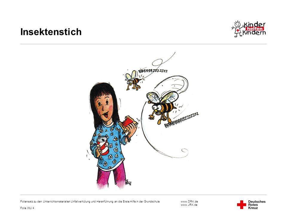 www.DRK.de www.JRK.de Insektenstich Foliensatz zu den Unterrichtsmaterialien Unfallverhütung und Heranführung an die Erste Hilfe in der Grundschule Fo