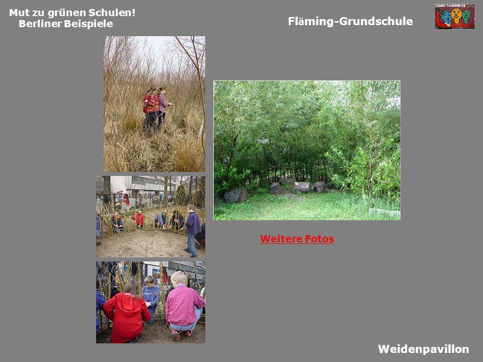Mut zu grünen Schulen! Berliner Beispiele Fl ä ming-Grundschule Weidenpavillon Weitere Fotos