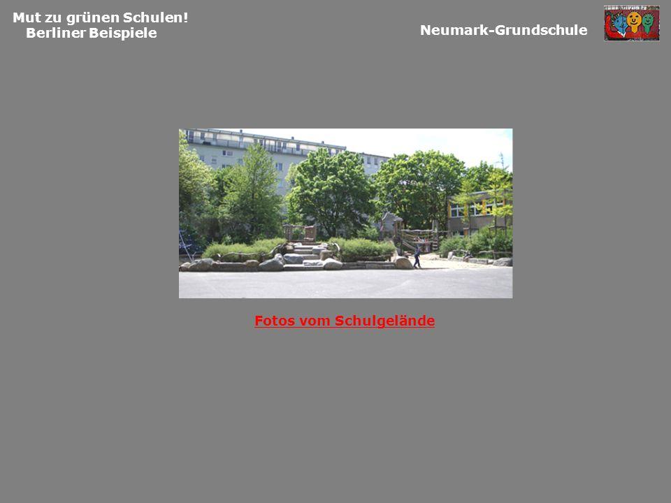 Mut zu grünen Schulen! Berliner Beispiele Neumark-Grundschule Fotos vom Schulgelände