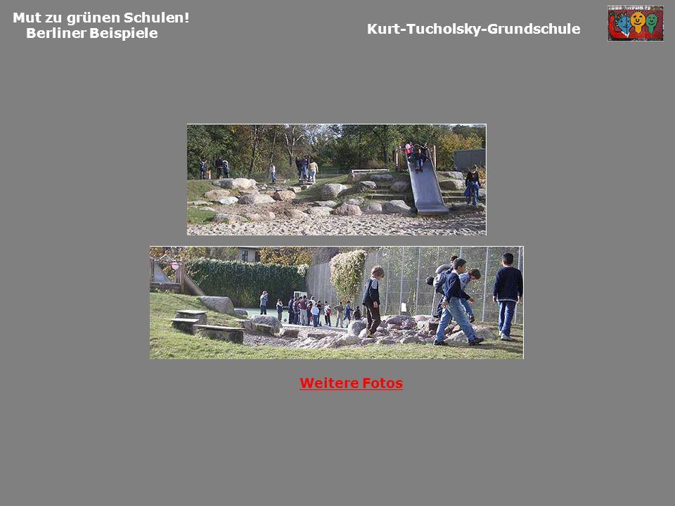 Mut zu grünen Schulen! Berliner Beispiele Kurt-Tucholsky-Grundschule Weitere Fotos