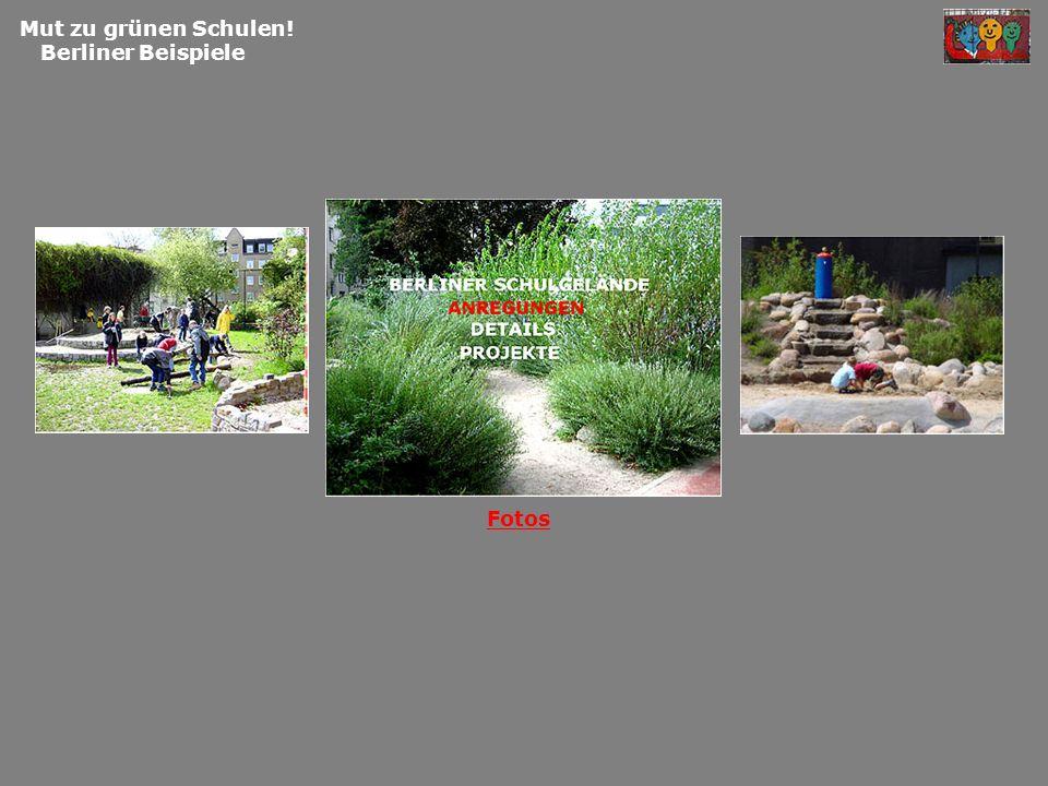Mut zu grünen Schulen! Berliner Beispiele Fl ä ming-Grundschule Pausengestaltung.