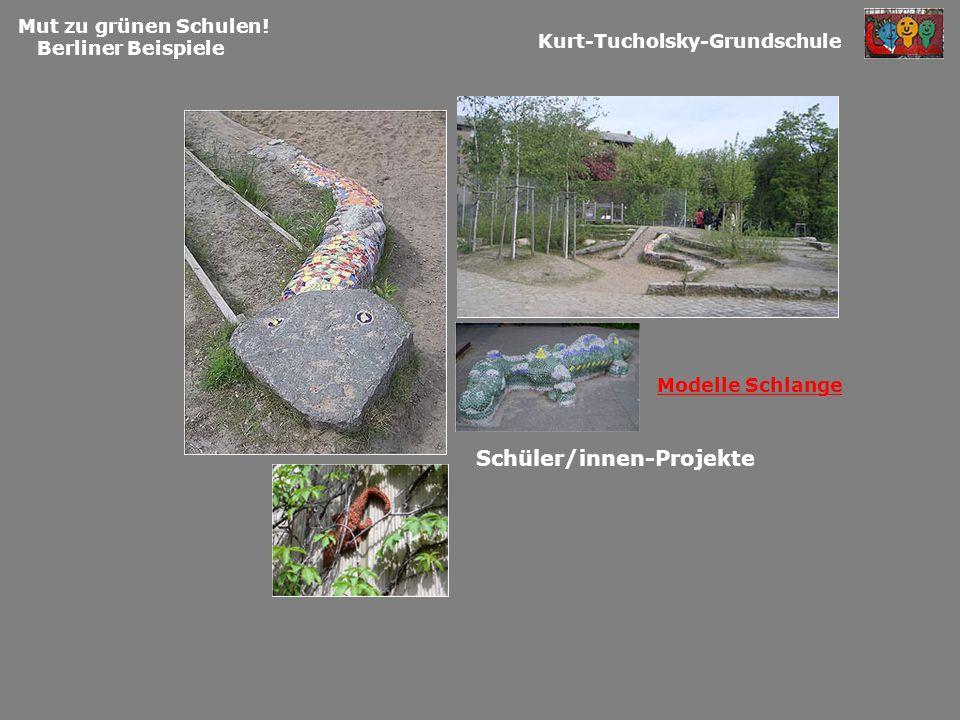 Mut zu grünen Schulen! Berliner Beispiele Kurt-Tucholsky-Grundschule Schüler/innen-Projekte Modelle Schlange