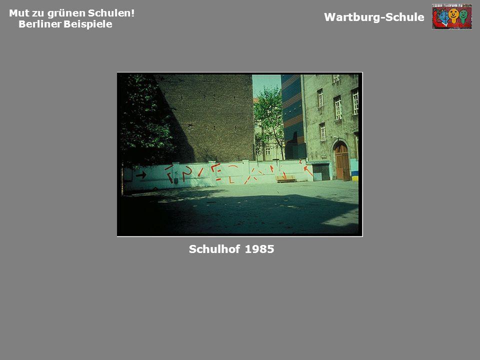 Mut zu grünen Schulen! Berliner Beispiele Wartburg-Schule Schulhof 1985