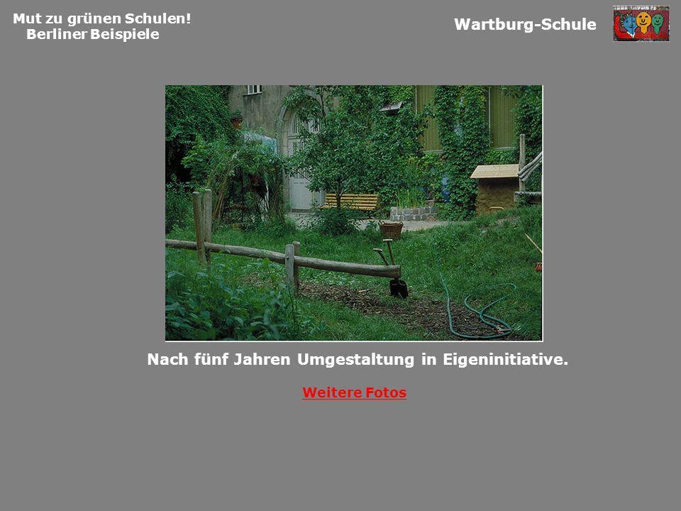 Mut zu grünen Schulen! Berliner Beispiele Wartburg-Schule Weitere Fotos Nach fünf Jahren Umgestaltung in Eigeninitiative.