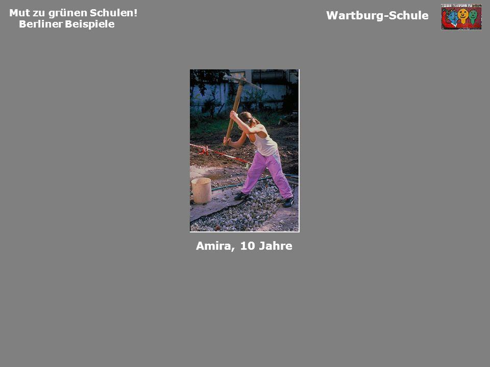 Mut zu grünen Schulen! Berliner Beispiele Wartburg-Schule Amira, 10 Jahre