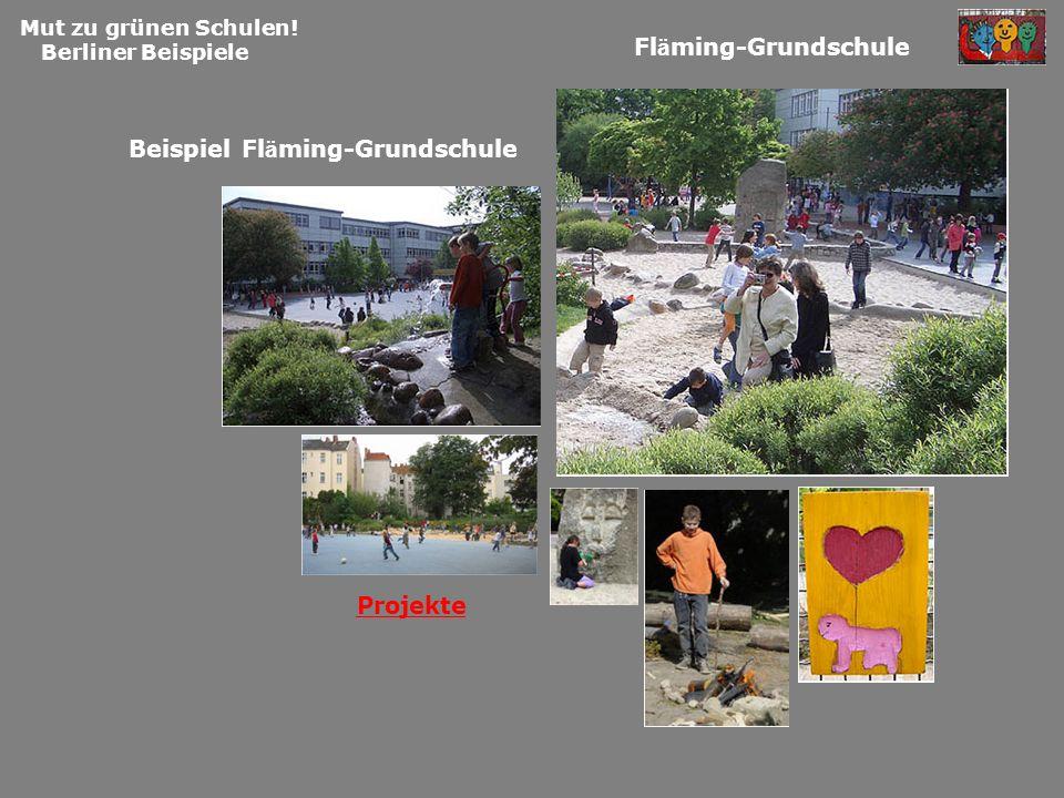 Mut zu grünen Schulen! Berliner Beispiele Fl ä ming-Grundschule Projekte Beispiel Fl ä ming-Grundschule