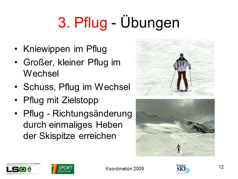 Koordination 2009 12 3. Pflug - Übungen Kniewippen im Pflug Großer, kleiner Pflug im Wechsel Schuss, Pflug im Wechsel Pflug mit Zielstopp Pflug - Rich