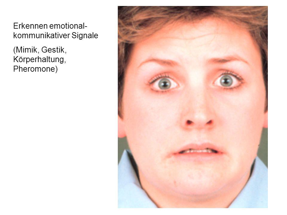 Erkennen emotional- kommunikativer Signale (Mimik, Gestik, Körperhaltung, Pheromone)