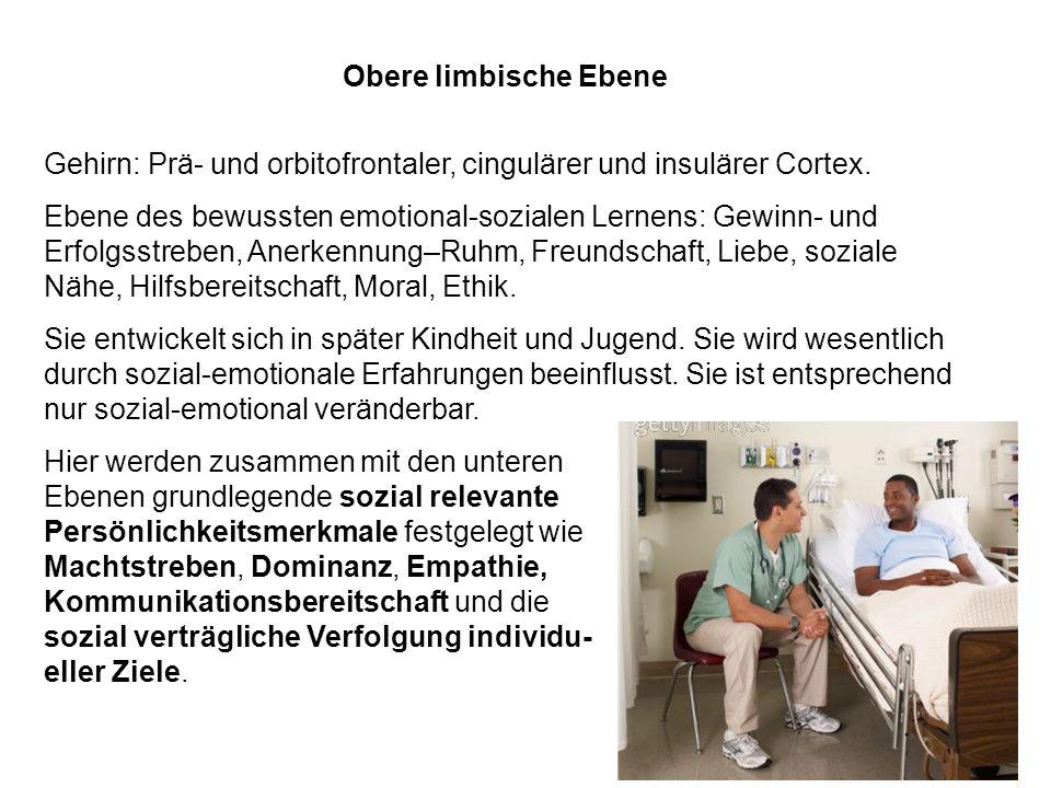 Obere limbische Ebene Gehirn: Prä- und orbitofrontaler, cingulärer und insulärer Cortex. Ebene des bewussten emotional-sozialen Lernens: Gewinn- und E