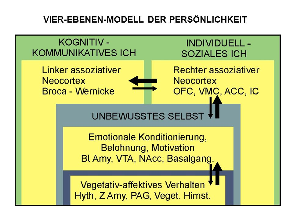 VIER-EBENEN-MODELL DER PERSÖNLICHKEIT -