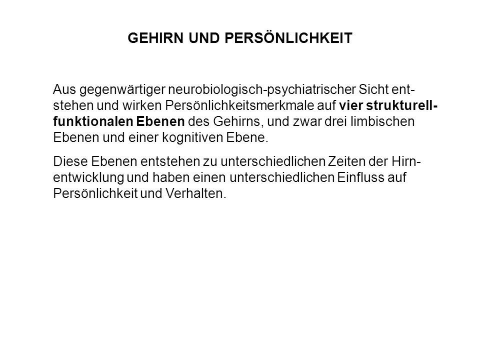 Kognitiv-sprachliche Ebene Gehirn: Linke Großhirnrinde, bes.