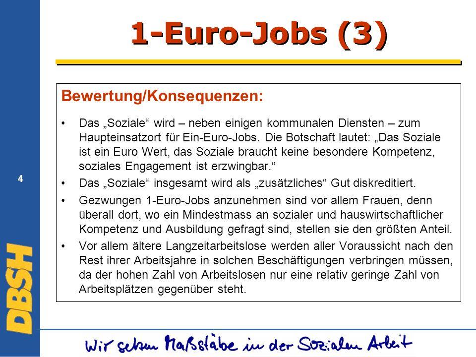 4 1-Euro-Jobs (3) Bewertung/Konsequenzen: Das Soziale wird – neben einigen kommunalen Diensten – zum Haupteinsatzort für Ein-Euro-Jobs.