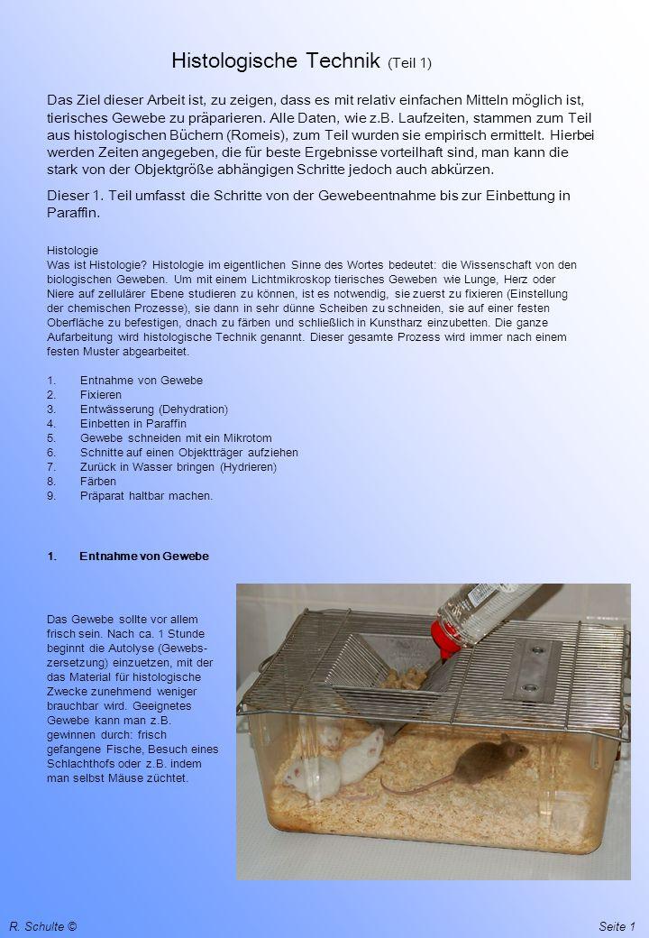 1 R. Schulte © Histologische Technik (Teil 1) Das Ziel dieser Arbeit ist, zu zeigen, dass es mit relativ einfachen Mitteln möglich ist, tierisches Gew