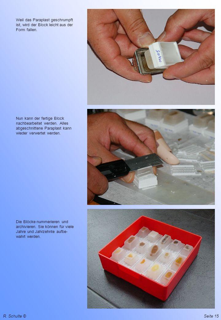 R. Schulte ©Seite 15 Weil das Paraplast geschrumpft ist, wird der Block leicht aus der Form fallen. Nun kann der fertige Block nachbearbeitet werden.