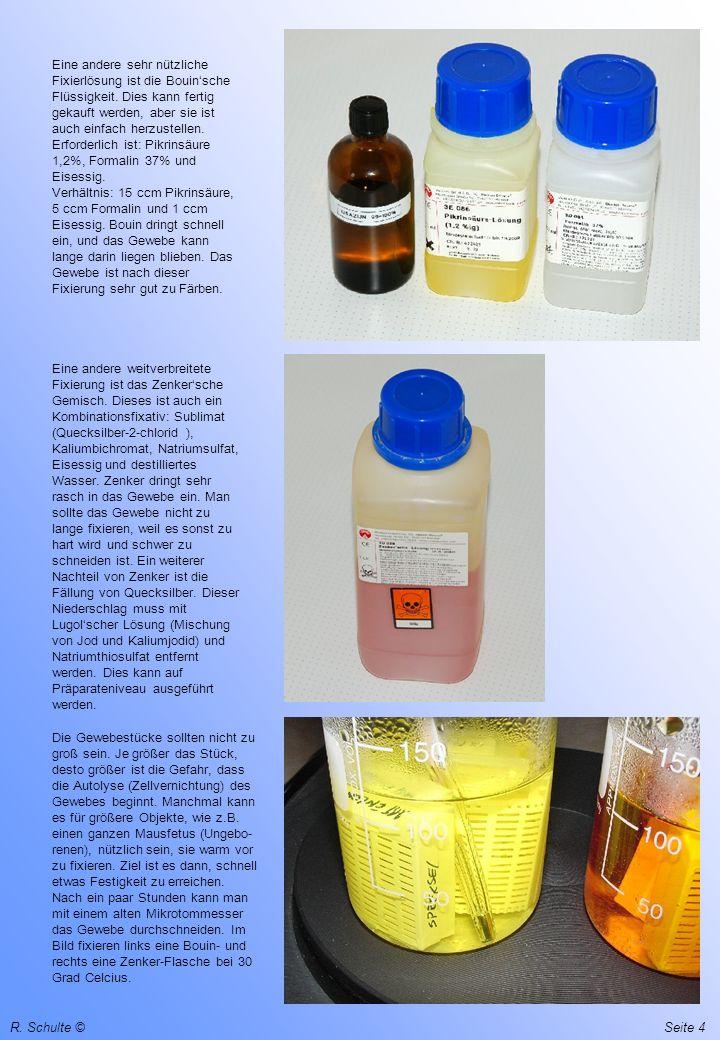 R. Schulte ©Seite 4 Eine andere sehr nützliche Fixierlösung ist die Bouinsche Flüssigkeit. Dies kann fertig gekauft werden, aber sie ist auch einfach